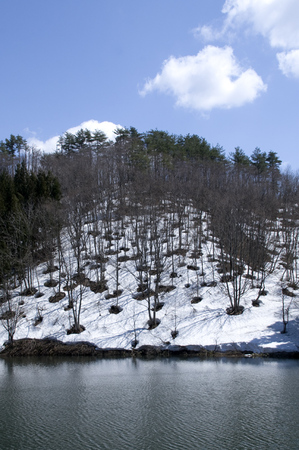 山 雪解け1.jpg