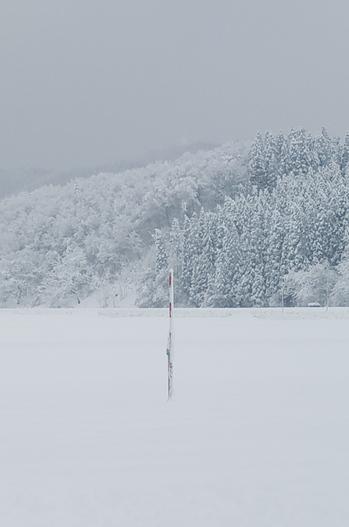 湯沢市積雪情報 1216.jpg