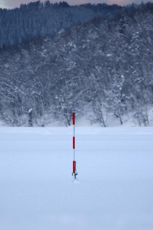 湯沢市積雪情報 2014.1.7.1.jpg