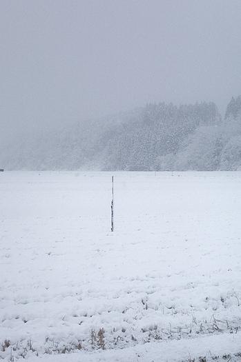 湯沢市積雪情報.jpg