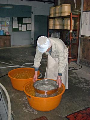 米洗い.JPG