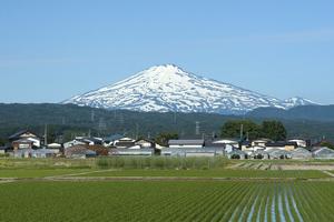 鳥海山写真2013.6.13 倉内.jpg