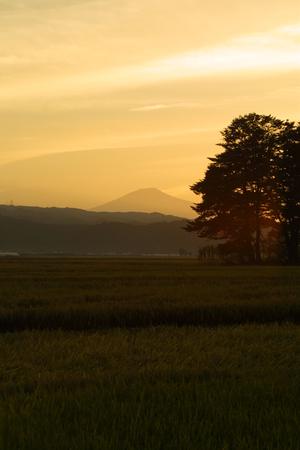 鳥海山写真2013.9.19.深堀2.jpg