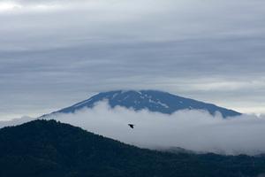 鳥海山写真2013.9.2みたけ蔵.jpg