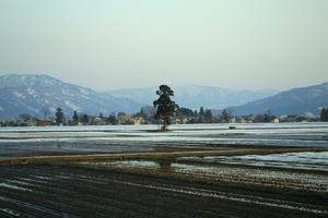 鳥海山写真2014.4.8 柳田橋付近2.jpg