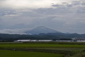 鳥海山写真2014.7.9.jpg