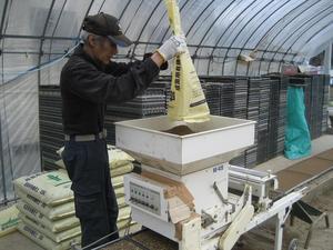 05種籾播種作業⑤(H22).JPG