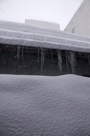3月10日雪2.jpg
