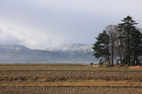 初雪観測1.jpg