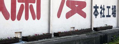 花植え4.jpg