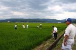 稲見会1.jpg