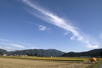 湯沢市山田地区稲刈り 6.jpg