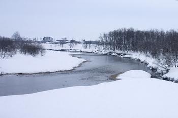河川写真02.29.jpg