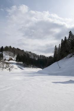 白い残雪1.jpg