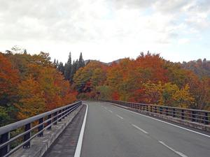 国道398.jpg