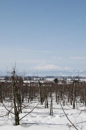 鳥海山写真2015.2.22.2 .jpg