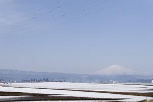 鳥海山写真2015.3.21 .jpg