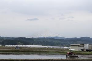 鳥海山写真2015.5.8 .jpg
