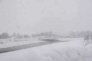 秋田県 湯沢市 積雪情報2016.1.13.2 .jpg