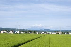 鳥海山写真2016.7.25.jpg