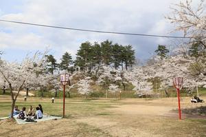前森公園20017.4.25.2.jpg