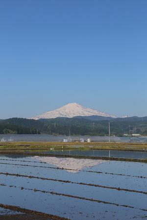鳥海山写真  2017.5.19.jpg