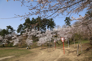 前森公園 2019.4.23.3.jpg