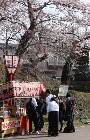前森公園 2019.4.23.4.jpg