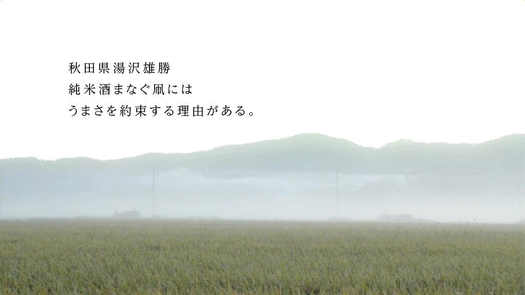 秋田県湯沢雄勝 純米酒まなぐ凧にはうまさを約束する理由がある。