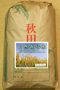 自然栽培米5.jpg